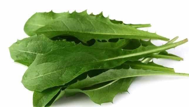 It's Spring - Eat Your Dandelion Greens - GreenStar