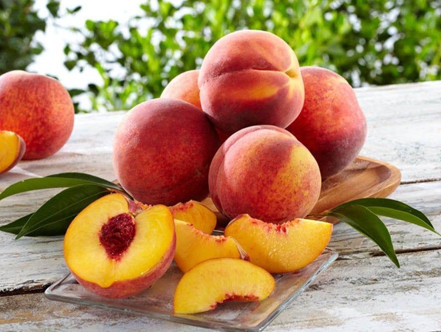 Peaches Nude Photos 43