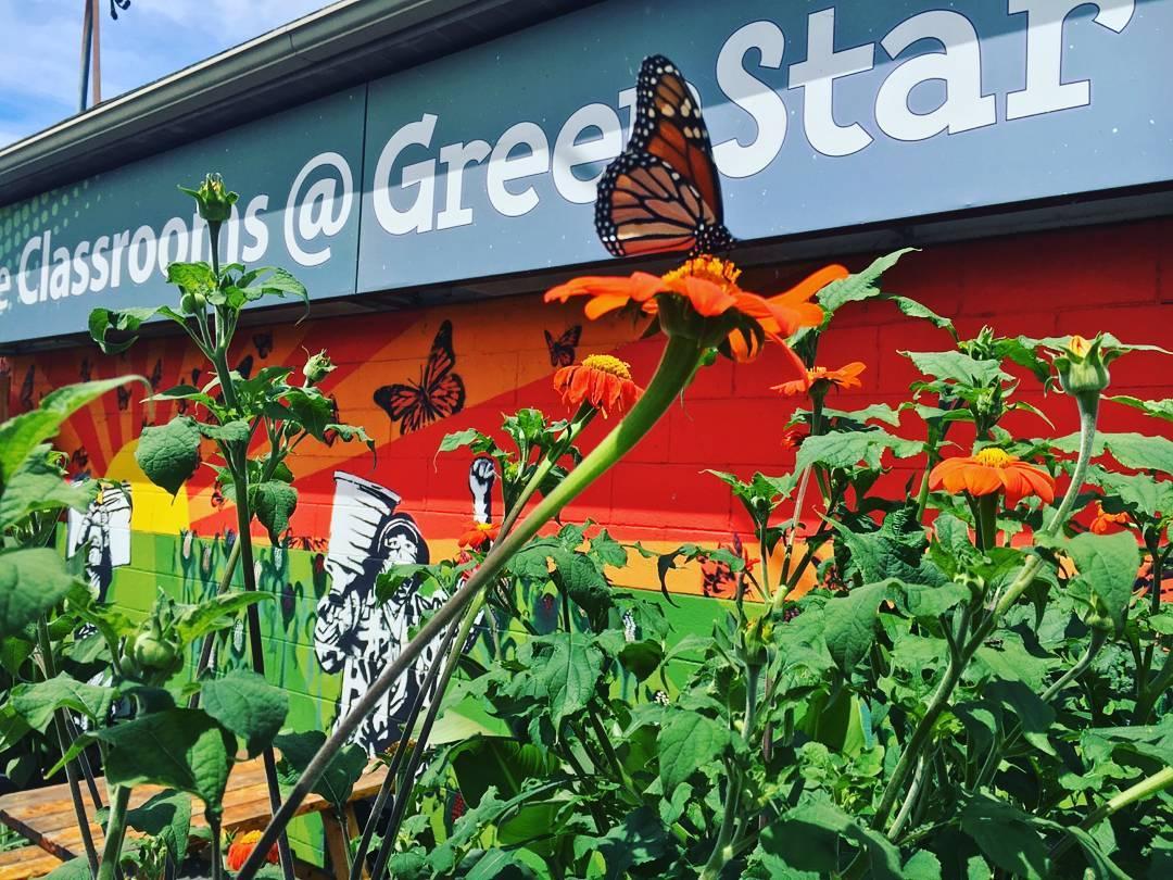 Classrooms @ GreenStar