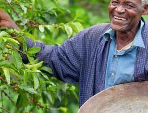 Give Thanks and Pay It Forward with Fair Trade