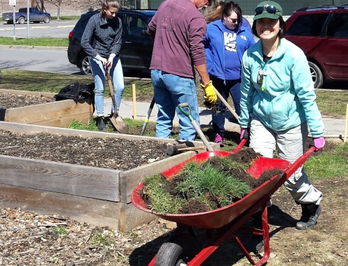 Call for Youth Garden Volunteers!