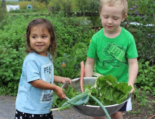 GreenStar Supports the Ithaca Children's Garden