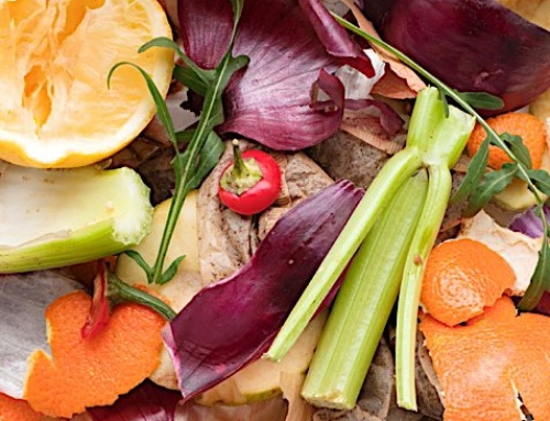Earth Day Starts at Home: Reducing Food Waste